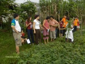 farm singapore