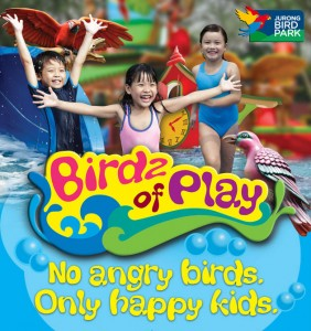 birdz-of-play