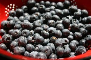bleu-berries-by-teebeewee